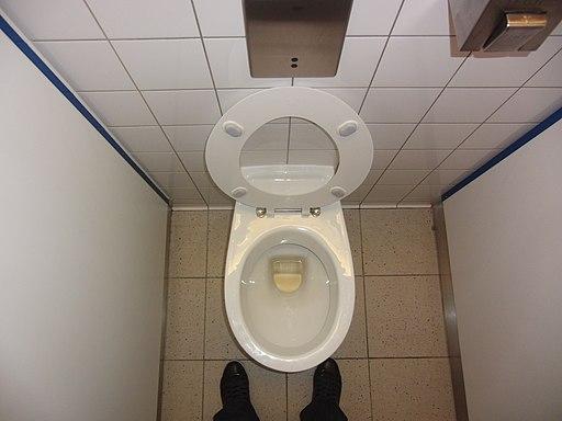Toilet (8844253890)
