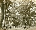 Tokaido1825.jpg