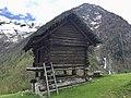 Torba di Sartüü località Piano Campo Vallemaggia.jpg