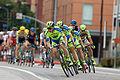 Tour of California 2015 (17605015390).jpg