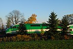 Trainspotting GO train -445 banked by MPI MP-40PH-3C -651 (8123622596).jpg