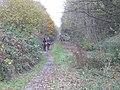 Trans Pennine Trail - geograph.org.uk - 1562819.jpg