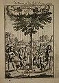 Tree on the Island of Fer (Hierro), 1685.jpg
