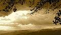 Troina - Vista dell'entroterra della Sicilia (sembra un mare in tempesta) - panoramio.jpg