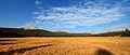 Tuolumne Meadows hdr-2.jpg