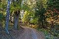 Tur over Balkehøgda fra Belke kirke ned til Mjøsa en oktoberdag 12.jpg