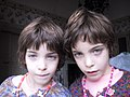 Twins - Flickr - Gabuchan.jpg