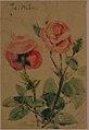 Two Roses MET 1971.253.3.jpg