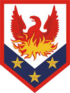 US Army 110th Maneuver Enhancement Brigade SSI.png