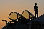 US Navy 100514-N-3595W-002 A sailor assigned to the Patriots of Electronic Attack Squadron (VAQ) 140 watches the sunset on top of an EA-6B Prowler aboard the aircraft carrier USS Dwight D. Eisenhower (CVN 69).jpg