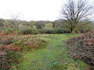 Ulverscroft Valley