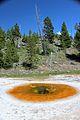 Upper Geyser Basin Yellowstone 35.JPG