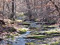 Upper Stepp Creek - panoramio.jpg