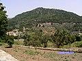 VALLDEMOSSA-MALLORCA-2 - panoramio.jpg