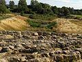 Ved NaturBornholm (2709287101).jpg