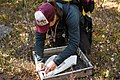 Vegetation surveys in Denali (4415b5c8-9190-4413-9443-2597c4280b57).jpg