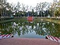 Venu Van Rajgir India - panoramio.jpg