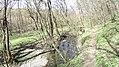 Verőce, 2621 Hungary - panoramio (79).jpg