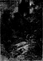 Verne - P'tit-bonhomme, Hetzel, 1906, Ill. page 105.png