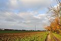Via Delle Querce - Fellegara, Scandiano (RE) Italia - 2 Dicembre 2012 - panoramio.jpg