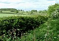 View back to M1 from near Kingshoe Wood - geograph.org.uk - 173717.jpg