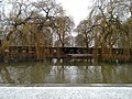 View from the bench (OpenBenches 3917-2).jpg