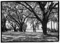 View from the west porch, looking west - Plum Orchard, Saint Marys, Camden County, GA HABS GA-2362-10.tif