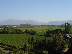 View of Aconcagua Valley.jpg