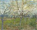 Vincent van Gogh - De roze boomgaard - Google Art Project.jpg