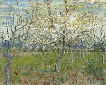 The Pink Orchard also Orchard with Blossoming Apricot Trees, March 1888. Van Gogh Museum, Amsterdam