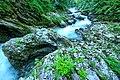 Vintgar Gorge (34971594244).jpg
