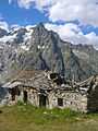 Vista dal Tour du Mont Blanc Val Ferret DSCN8820.JPG
