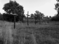 Vlakte van Waalsdorp (Waalsdorpervlakte) 2016-08-10 img. 246 GRAYSCALE.png