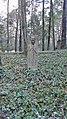 Waldfriedhof wilmersdorf jan2017 - 3.jpg