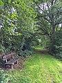 Waldweg im Westerwald (21378785770).jpg
