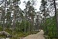 Walking trail, Inari, Finland (18) (36514278492).jpg