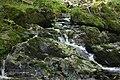 Wanderung Harz - Rund um Zorge - Sprakelbach - panoramio.jpg