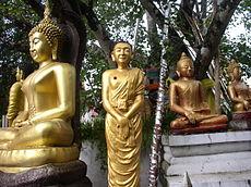 Wat Phra Sing,...