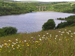 West Pennine Moors - The Wayoh reservoir, viewed from the Edgworth side with the Entwistle viaduct in the background.