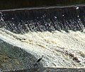 Weir on the River Clyde - geograph.org.uk - 895891.jpg