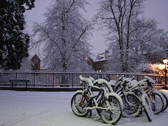 Wellington Square, Oxford - Wellington Square in the snow.
