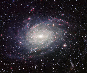 Wide Field Imager view of a Milky Way look-alike NGC 6744.jpg