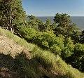 Woliński Park Narodowy klif 2016-08-25 p.jpg