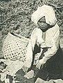 Woman with harvest, Wanita di Indonesia p88 (Stoomvart mij Nederland).jpg