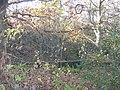 Woodland - Thackley Road, Thackley - geograph.org.uk - 1050951.jpg