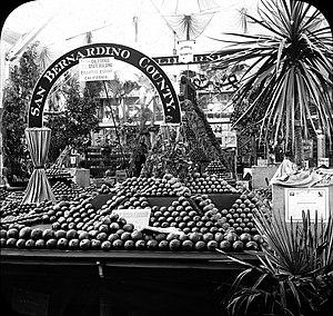 San Bernardino County, California - San Bernardino County horticulture exhibit at World Columbian Exposition, Chicago 1893.