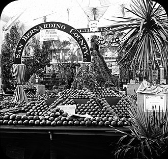 San Bernardino County, California - San Bernardino County horticulture exhibit at World Columbian Exposition, Chicago 1893.
