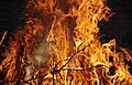 Wraxall 2013 MMB 59 Bonfire.jpg