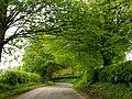 Yattendon Lane - geograph.org.uk - 8792.jpg