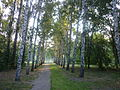 Yekaterinburg - Park dedicated to 50 years of Komsomol - photo 5.JPG